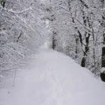 Tempesta di neve a Minneanapolis. Le foto