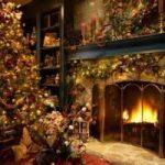 Natale ecosostenibile? Affitta un albero
