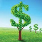 Aziende e Green Economy, un focus sulla nuova economia