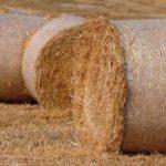 Ecoinvenzioni: la bio batteria che si ricarica con la paglia