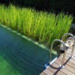 Ecoinvenzione: la piscina senza cloro