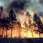 Blue Economy: ecco come evitare gli incendi?