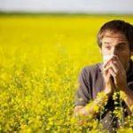 Contro le allergie, arriva il meteo-polline