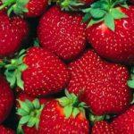 Fragole: un toccasana contro infarto e diabete