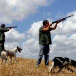 Caccia: regioni italiane fuorilegge, è scontro con l'Europa