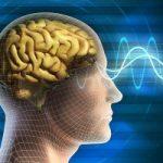 Come arrivare alla vecchiaia con una mente lucida e reattiva