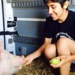 Studente salva il maiale dal macello: lo aveva allevato e si era affezionato