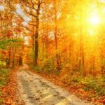 Ultimo week end di caldo, poi arriva l'autunno