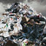 Anche a Long Island il recupero dei rifiuti alimentari diventa realtà
