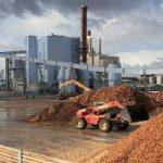 Biomasse: Europa leader mondiale del mercato