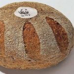 Idee per utilizzare il pane raffermo? Il WWF vi premia. Ecco il concorso Panepanda