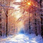 Ritorna l'inverno: temperature giù di 10°, pioggia e neve