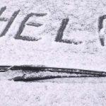 Il nuovo materiale anti-ghiaccio si ispira a uno scarabeo