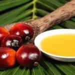 Olio di palma: le industrie investono milioni in pubblicità ma l'ISS segnala le categorie a rischio