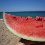 Cocomero: il frutto perfetto per l'estate, e non solo per l'acqua che contiene...