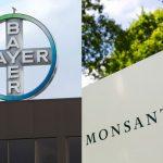 Bayer compra Monsanto: ecco i rischi per l'agricoltura