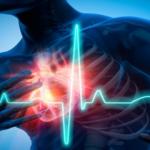 Un cerotto riparerà il cuore dopo l'infarto