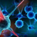 Rischio tumore dipende anche da dove vivi, lo spiega una ricerca americana