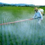 Onu: ogni anno 200mila morti per pesticidi inutili