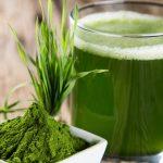 L'alga spirulina: il superfood naturale ricco di proteine