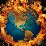 La sesta estinzione di massa viaggia a un ritmo 100 volte più veloce del «normale»