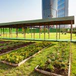Il week end più verde di Milano: è il momento di Greencity