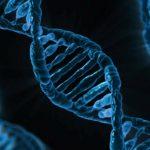 Origami di DNA