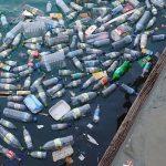 Un enzima che mangia la plastica