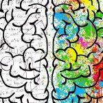 Che lingua parla il nostro cervello?