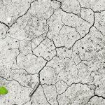 Come faremo se l'acqua continuerà a diminuire?