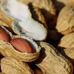 Le arachidi aiutano a mangiar meno