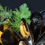 Le cozze contaminate di Washington