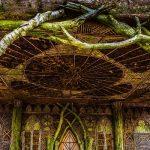 La magia delle case sugli alberi