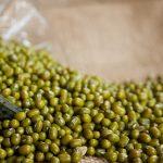 I fagioli indiani verdi giovano alle colture di cereali