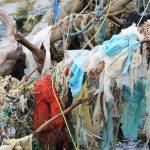 Il primo vero successo della Ocean Cleanup