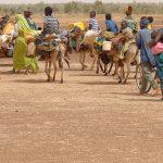 L'ingente portata del fenomeno migratorio