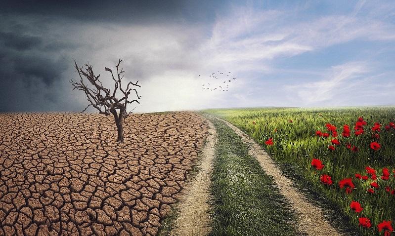 Il clima alla Biennale di Venezia 2020