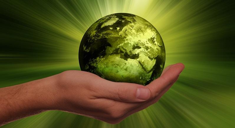 sostenibilità nella pa