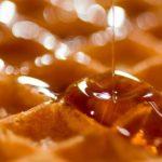 cibo a base di insetti