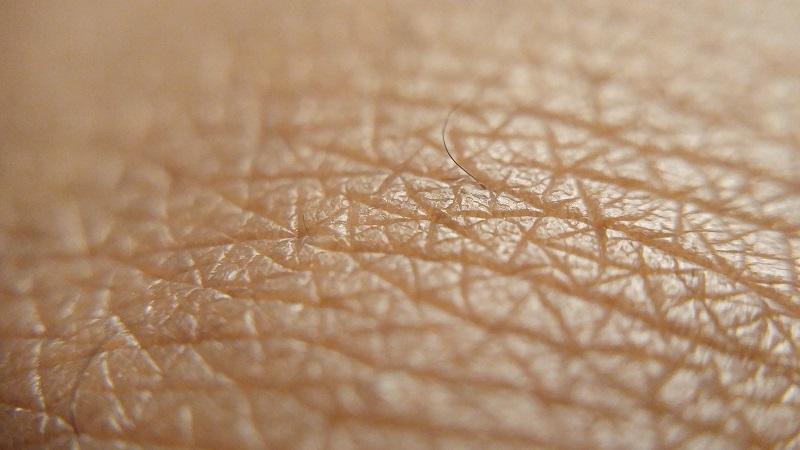 tessuto umano artificiale