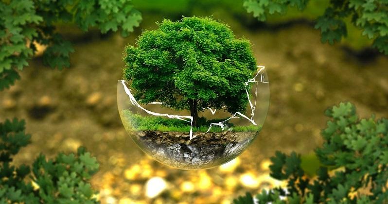 sospensione leggi sull'ambiente